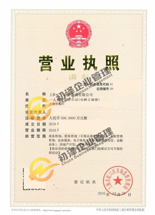 上海商务咨询公司注册
