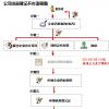 2019年上海公司注册流程图